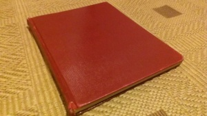 The Red Journal - the real first edition of my first novel.